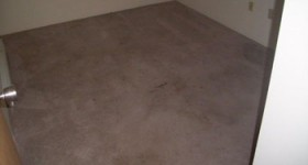 Residential Carpet Cleaning-Before